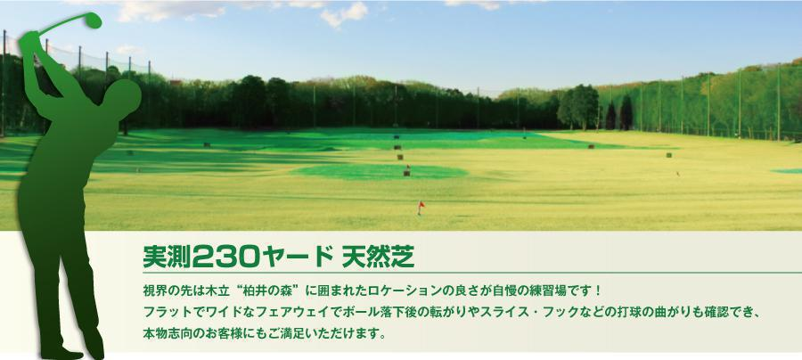 柏井ゴルフセンター(千葉市花見川区)/打ちっぱなし・ゴルフ練習場一覧[コンドル]