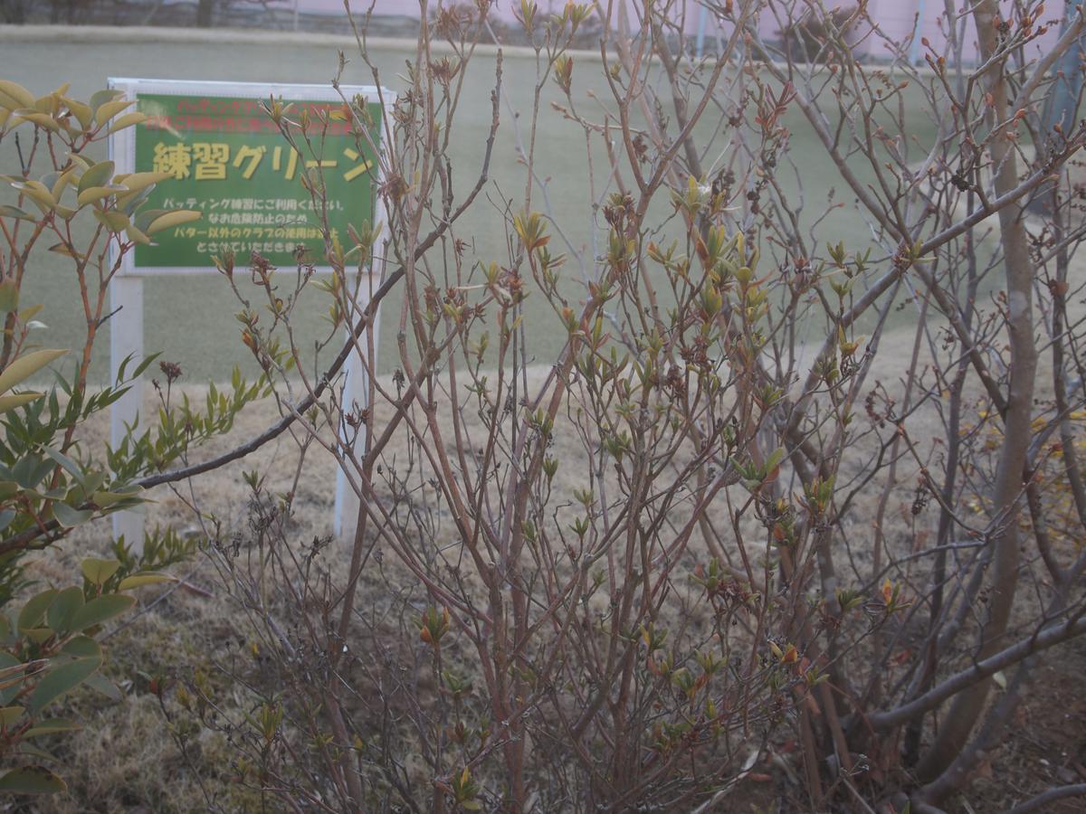 ヒルトップバーディクラブ(佐倉市)/打ちっぱなし・ゴルフ練習場一覧[コンドル]